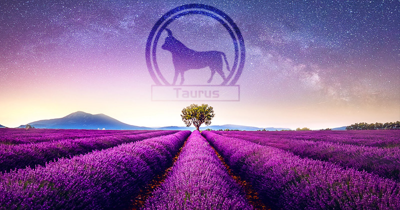 Taurus Zodiac Sign: Nature, Positive & Negative Traits