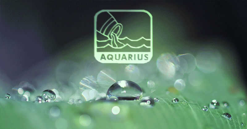 Aquarius Zodiac Sign – Positive & Negative Traits, Career, Facts
