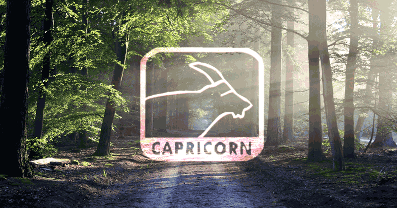 Capricorn Zodiac Sign: Positive & Negative Traits, Facts