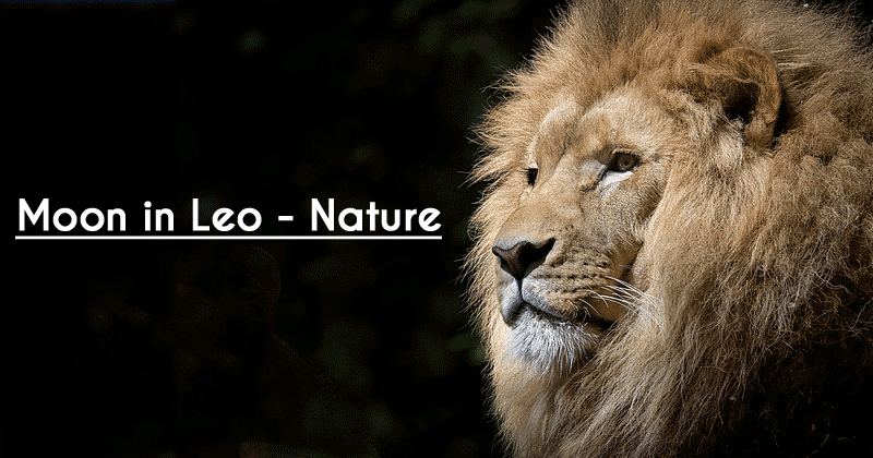 Moon in Leo - Nature